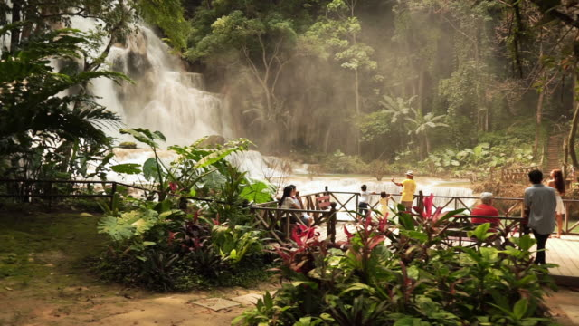vidéos et rushes de group of people admiring the view at waterfalls - forêt tropicale humide