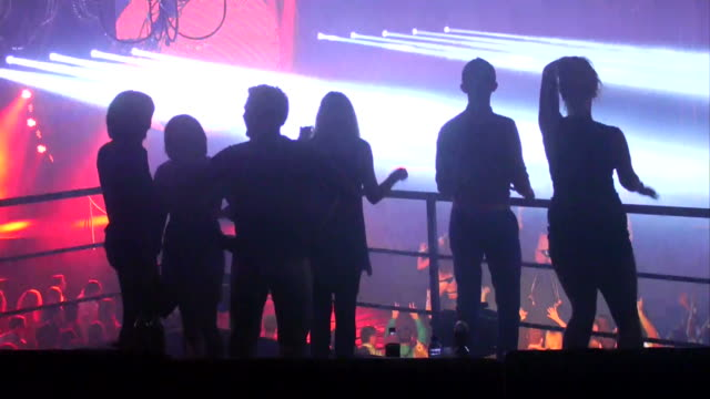 Group of people dance in a vip area