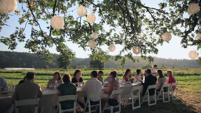 vídeos de stock e filmes b-roll de ws pan group of people dining at banquet table outside in field server pouring wine/washington, usa - banquete