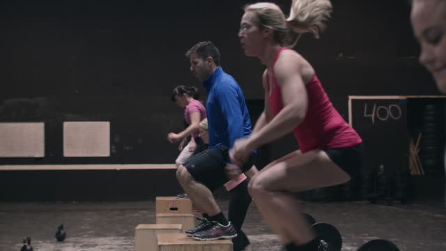 vídeos de stock e filmes b-roll de group of people doing boxjumps in a gym box - aperfeiçoamento pessoal
