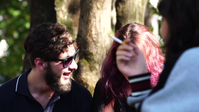group of people / friends having fun at park - smoking issues stock videos & royalty-free footage