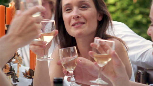 group of people having drinks outdoors / talking and toasting wine glasses / saint-ferme, france - 30 34 years stock videos & royalty-free footage
