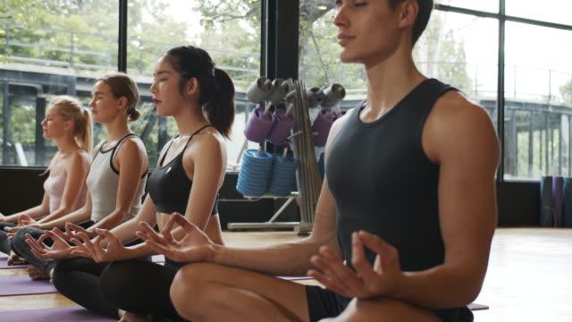 vídeos y material grabado en eventos de stock de 4k uhd : grupo de personas se está estirando en clase de yoga. - equilibrio vida trabajo
