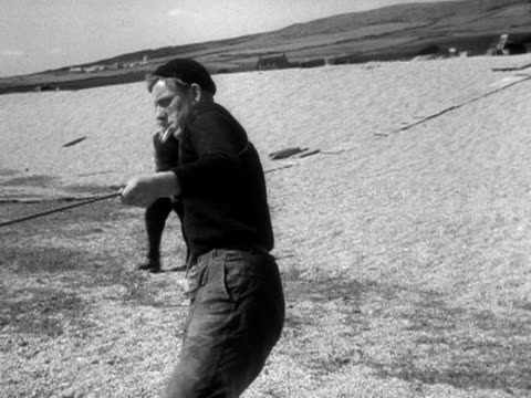 group of people move across chesil beach to start to close and draw in a fishing net. 1956. - 1956 stock-videos und b-roll-filmmaterial