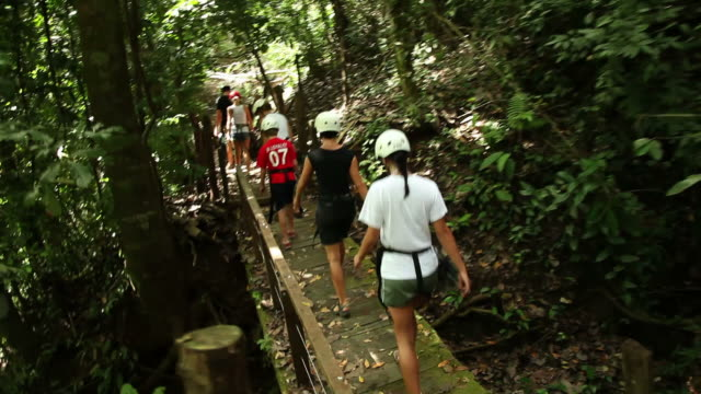 group of people on a canopy tour - eco tourism stock videos & royalty-free footage