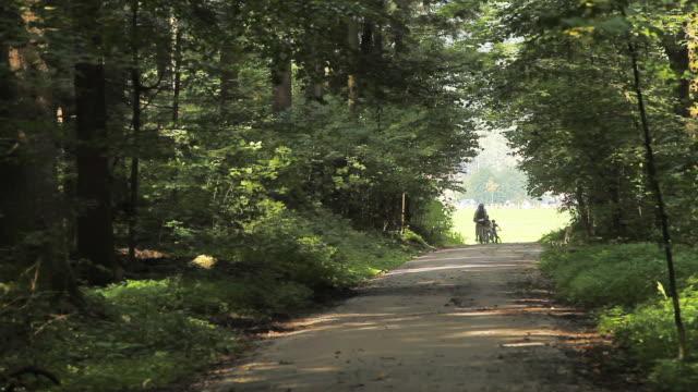 ws group of people riding bikes in forest lane, strobl, salzburg, austria - von bäumen gesäumt stock-videos und b-roll-filmmaterial