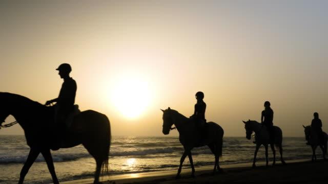 vídeos y material grabado en eventos de stock de grupo de personas montando caballos en la puesta de sol en la playa en cádiz - caballo familia del caballo