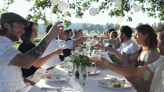 r/f ms group of people toasting at banquet table set for dinner outside in field/washington, usa - feinschmecker essen stock-videos und b-roll-filmmaterial