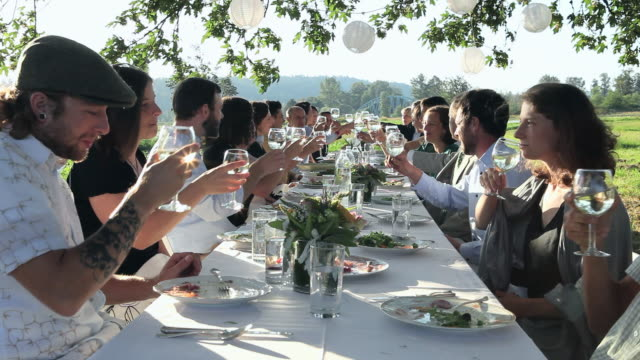 vidéos et rushes de ms group of people toasting at banquet table set for dinner outside in field/washington, usa - déjeuner