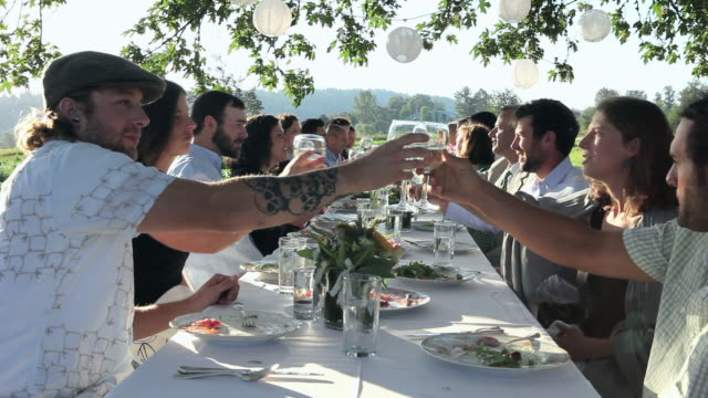 r/f ms group of people toasting at banquet table set for dinner outside in field/washington, usa - guest stock videos & royalty-free footage