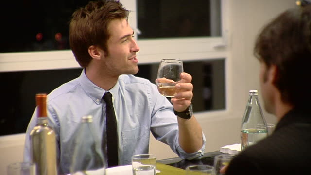 vidéos et rushes de ms group of people toasting with wine glasses sitting at dining table, los angeles, california, usa - chemise et cravate