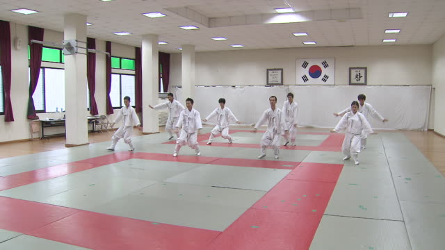 ms group of people training taekkyeon (traditional korean martial art) / south korea - combat sport stock videos & royalty-free footage