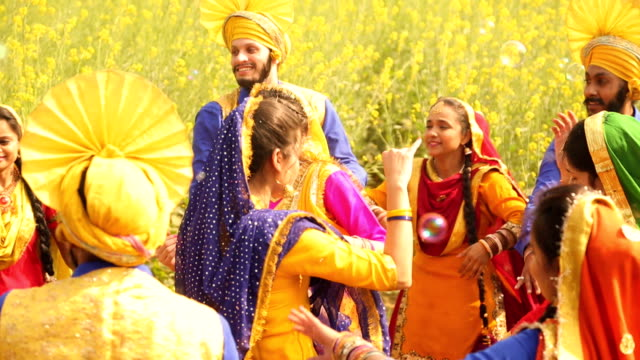 group of punjabi men and women celebrating baisakhi festival in the farm, punjab, india - punjab india stock videos and b-roll footage