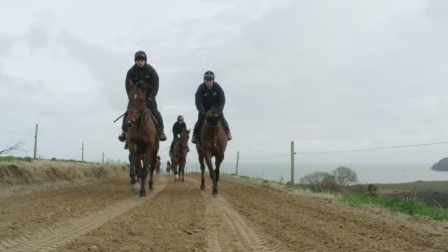 ws pov  group of riders on horses galloping down country lane in cold weather / pembrokeshire, wales, united kingdom    - animal colour stock videos & royalty-free footage