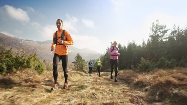 group of runners running on a grassy mountain trail in sunshine - 40 49 years stock videos & royalty-free footage