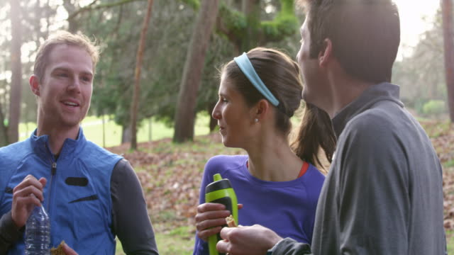 ms group of runners talking while drinking water and eating energy bars after run in park - kleine personengruppe stock-videos und b-roll-filmmaterial