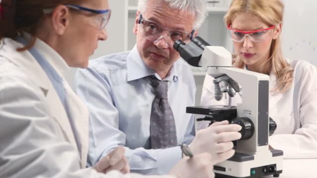 vídeos de stock, filmes e b-roll de grupo de cientistas microscópio em um laboratório, com - camisa e gravata
