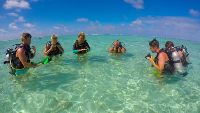 vídeos y material grabado en eventos de stock de group of scuba divers are getting ready to dive in rarotonga lagoon, cook islands - buceo con equipo