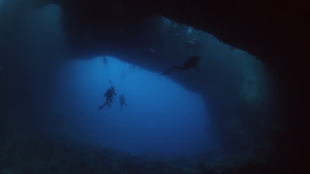 A group of scuba divers exploring the Blue Holes in Palau