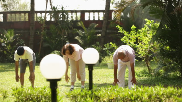 Group of senior people doing yoga in a garden