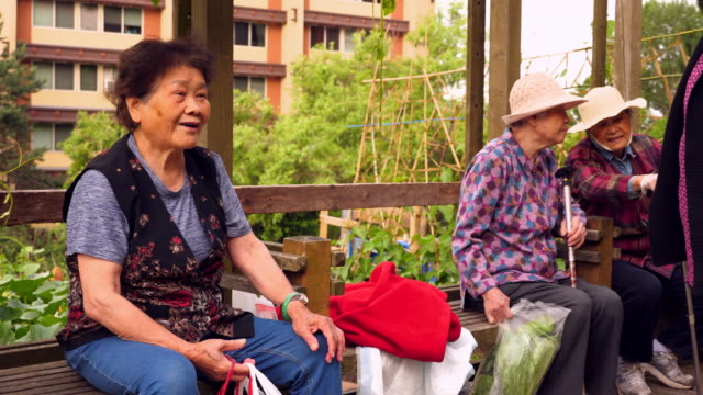 ms group of senior women sitting on bench after harvesting vegetables from community garden - community garden stock videos & royalty-free footage