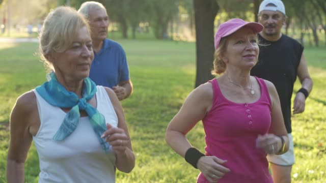 group of seniors enjoying exercising together at a park - stepping stock videos & royalty-free footage