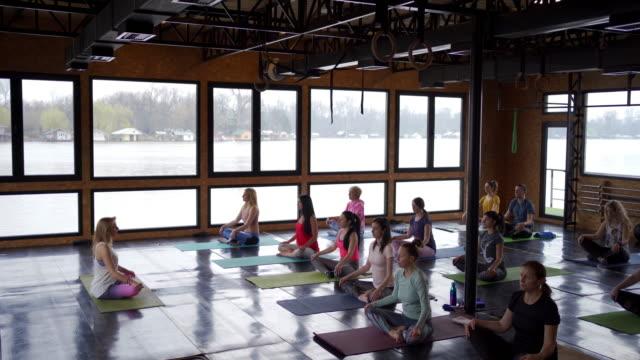 ヨガのクラスで蓮の位置を練習する穏やかな人々のグループ - large group of people点の映像素材/bロール