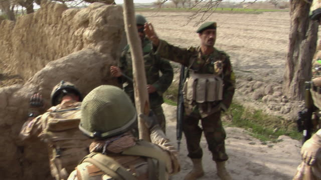 group of soldiers having discussion in field / mausa qala helmand province afghanistan - afghanische nationaltruppe stock-videos und b-roll-filmmaterial