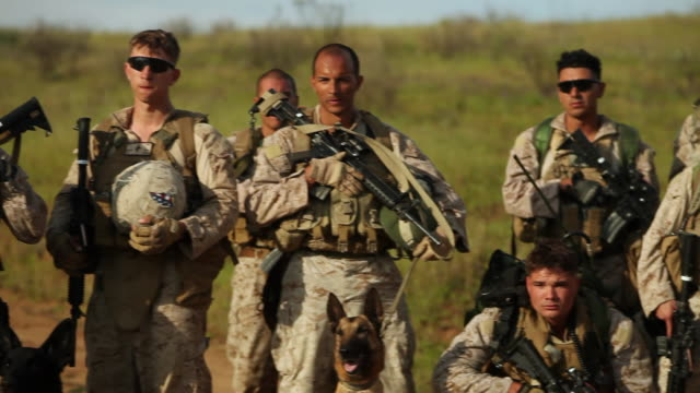 vídeos de stock e filmes b-roll de ws pan group of soldiers posing with guns and dogs audio / camp pendleton, ca, united states - exército americano