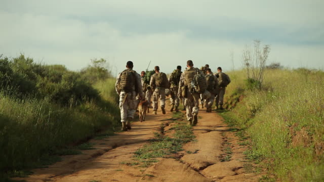 ms group of soldiers walking audio / camp pendleton, ca, united states - us military stock videos & royalty-free footage
