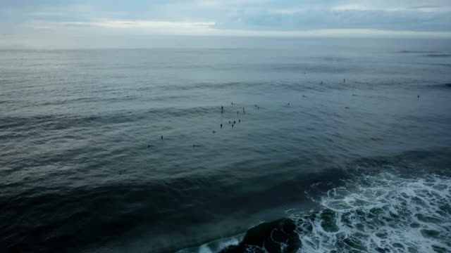 group of surfers floating in water on coastline - tall high stock videos & royalty-free footage