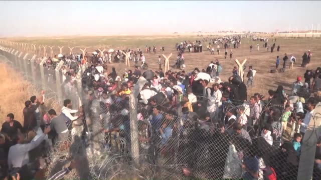group of syrians, fled from clashes, cross turkish-syrian border to take shelter in turkey on june 14, 2015 in sanliurfa's akcakale district, turkey.... - türkei stock-videos und b-roll-filmmaterial
