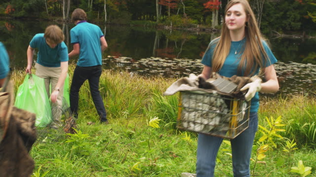 ms zi shaky group of teenagers cleaning lake shore from garbage, dorset, vermont, usa - environmental cleanup stock videos and b-roll footage