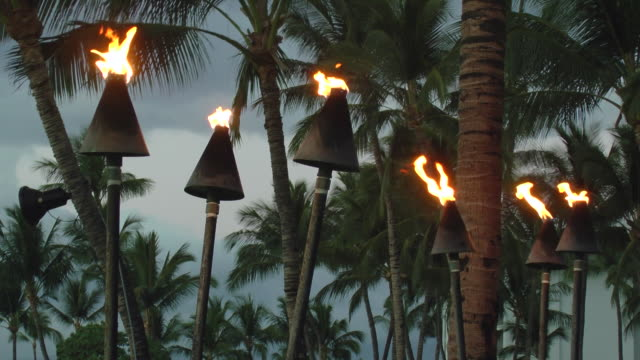 ms group of tiki torches on fire next to palm trees / kona, hawaii, united states - next to stock videos & royalty-free footage