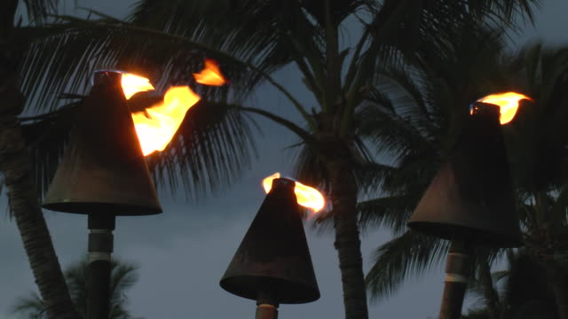 cu group of tiki torches on fire next to palm trees / kona, hawaii, united states - next to stock videos & royalty-free footage