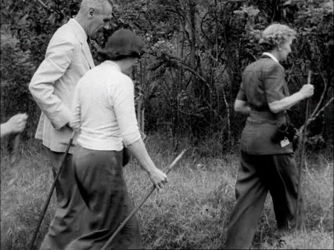 a group of tourists walk through the bush during a safari in the aberdare national park kenya 1953 - recreational pursuit stock videos & royalty-free footage