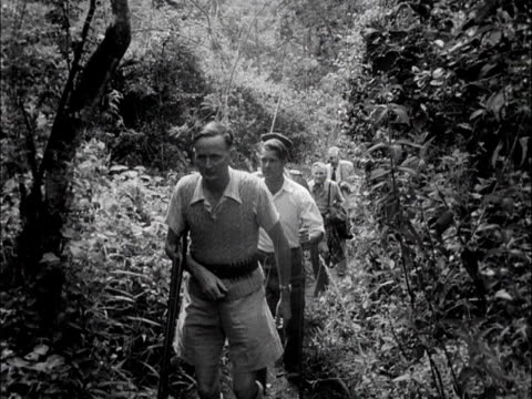 group of tourists walk through the bush during a safari in the aberdare national park, kenya. 1953. - kenya stock videos & royalty-free footage