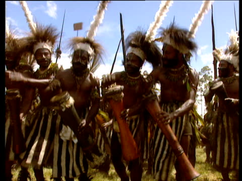 Group of tribal dancers perform banging drums wearing black and white zebra type costumes Papua New Guinea