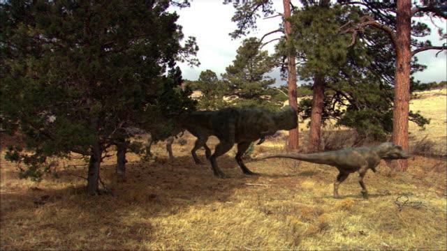 a group of tyrannosauruses walk through trees. - dinosaur stock videos & royalty-free footage