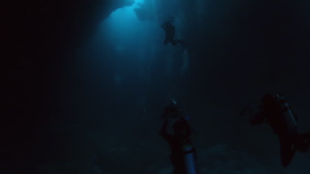 A group of underwater photographers exploring the Blue Holes in Palau