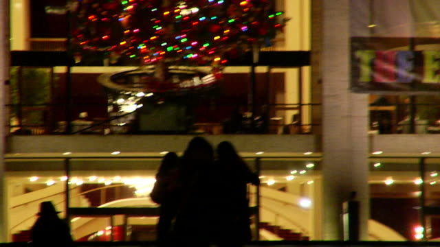 MS Group of unidentifiable women in silhouette hugging in front of Revson Fountain Reframing TU Christmas tree in Metropolitan Opera House window...