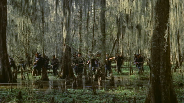 vídeos de stock, filmes e b-roll de ms group of union soldiers searching wooded swampland - exército da união