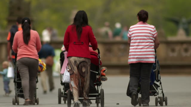 a group of women and children walk through central park in spring - gemeinsam gehen stock-videos und b-roll-filmmaterial