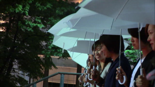ms group of women holding umbrellas and standing side by side on pedestrian overpass at night / tokyo, japan - side by side stock videos & royalty-free footage