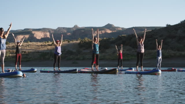 a group of women in mountain pose/upward salute yoga position on paddleboards on a desert lake under a clear, blue sky with a mesa in the background in western colorado (snooks bottom) - mountain pose stock videos and b-roll footage