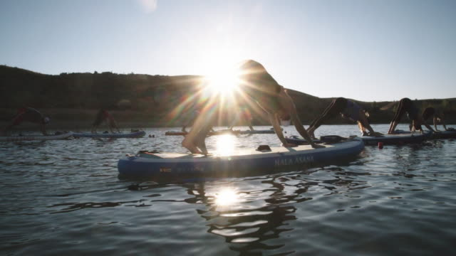 a group of women in the downward facing dog yoga position on paddleboards on a desert lake under a clear, blue, sunny sky in western colorado (snooks bottom) - salvataggio video stock e b–roll