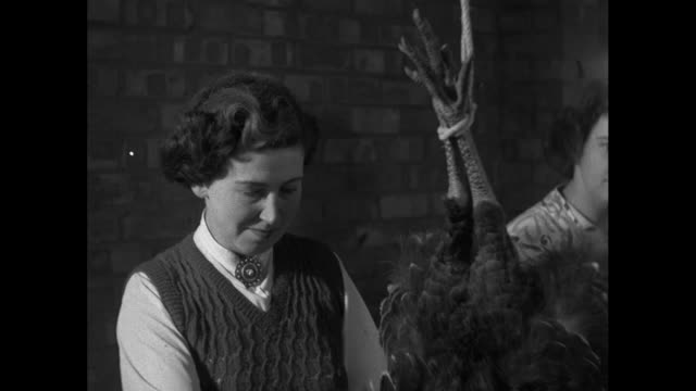 group of women pluck turkeys; 1953 - skirt stock videos & royalty-free footage
