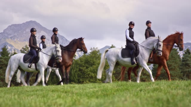 ts group of women riding horses across mountain pasture - all horse riding stock videos and b-roll footage
