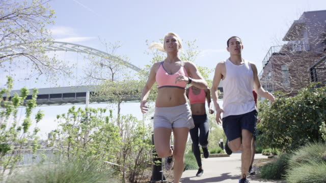 group of young adult runners running in the city along the waterfront - body concern stock videos and b-roll footage