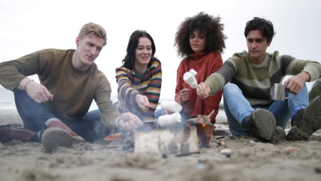 Group of young adult sitting around campfire toasting marshmallows